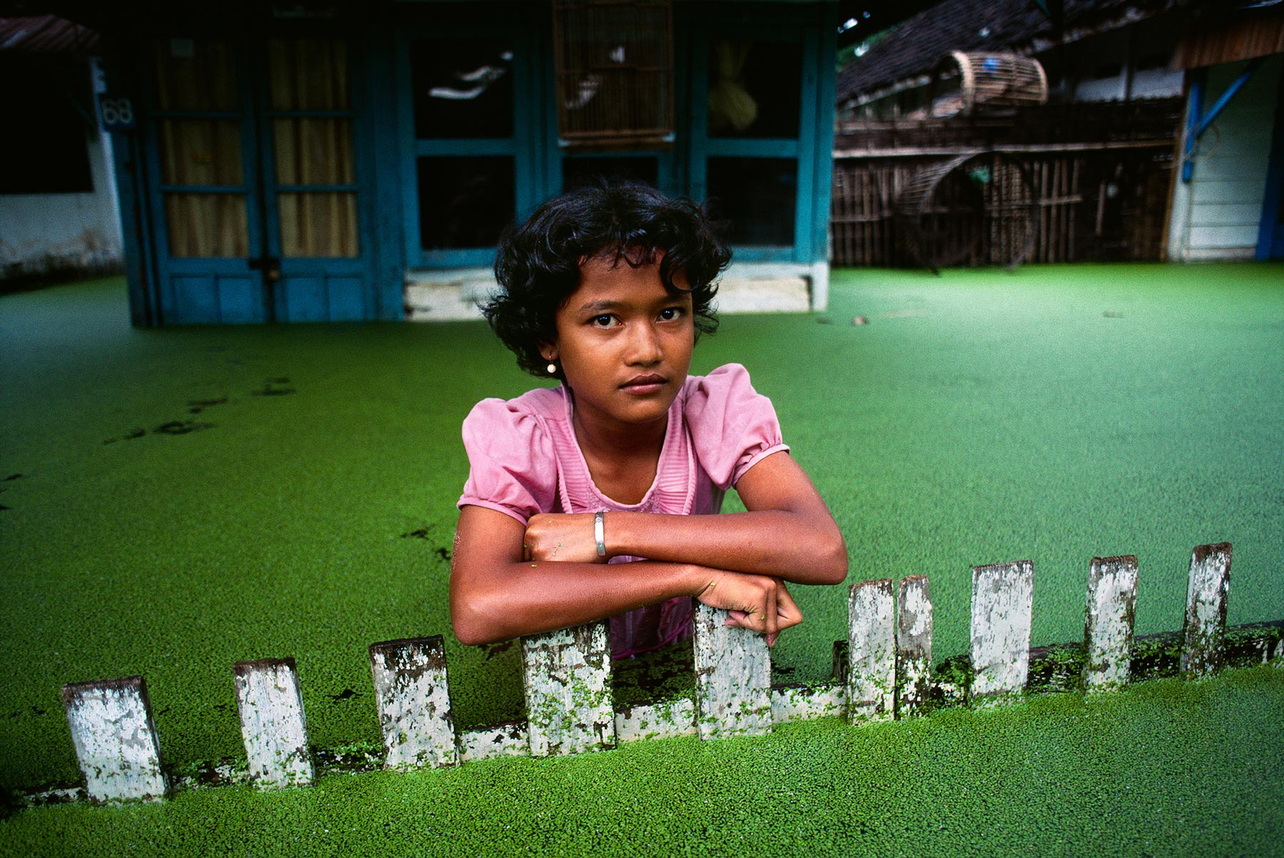 http://photos.stevemccurry.com.s3.amazonaws.com/sites/default/files/gallery/INDONESIA-10004.jpg