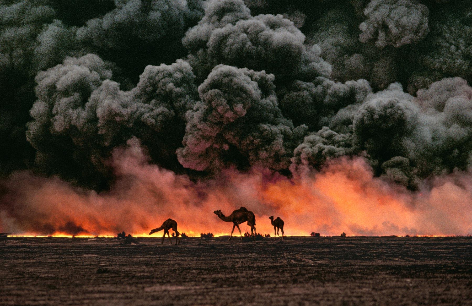 fotografias de la guerra de iraq: