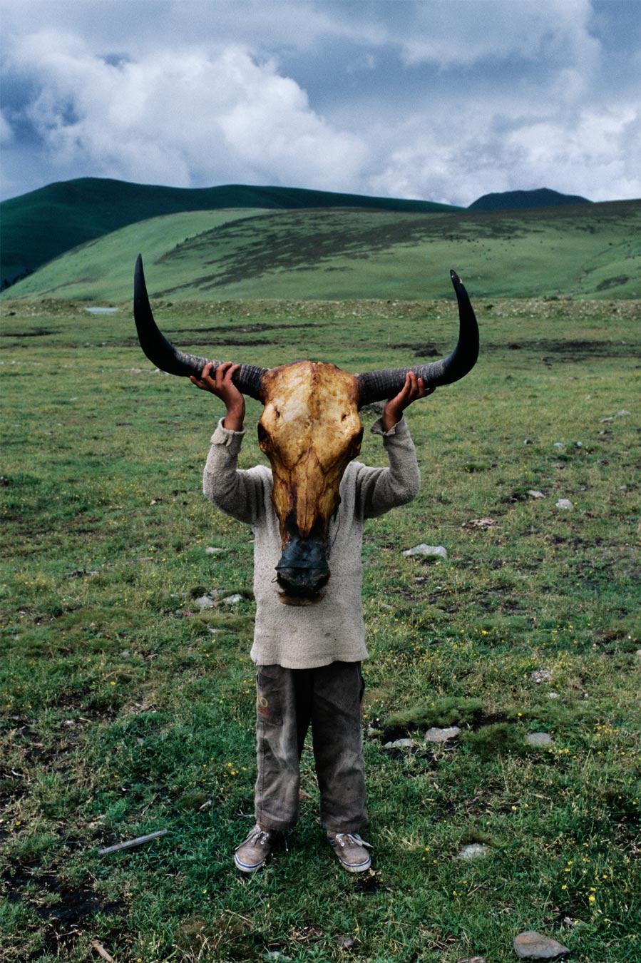 Скотоложство смотреть бесплатно 14 фотография